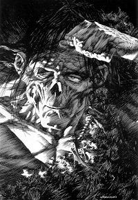 Bernie Wrightson's Frankenstein - Copy