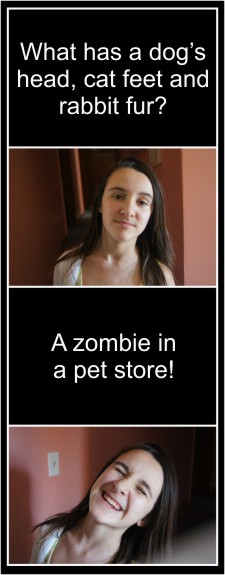 Zombie Jokes! What has a dog's head, cat feet and rabbit fur? A zombie in a pet store!