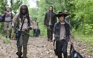 The Walking Dead s05e02, Strangers
