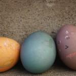 Lazy, lazy eggs!