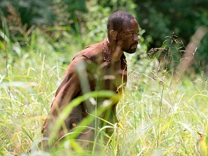The Walking Dead, 604, Here's Not Here