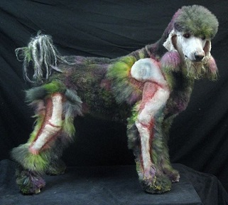 Xerxes the Zombie Poodle